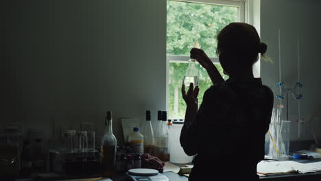 Silhouette-Of-A-Female-Researcher-Working-With-Product-Samples-In-A-Flask-Back-View