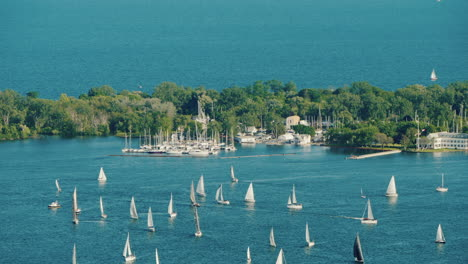Sailing-Regatta-Around-Central-Island-Opposite-Toronto-Canada