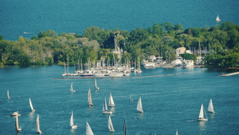 View-Of-The-Central-Island-In-Front-Of-The-City-Of-Toronto-Green-Trees-And-Many-Sailing-Yachts-Near-