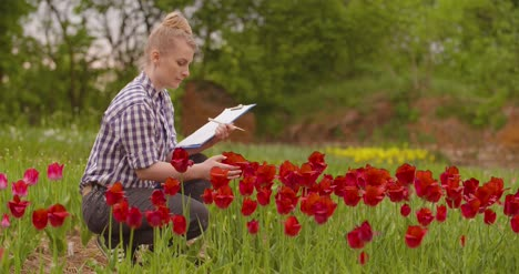 Female-Researcher-Walking-While-Examining-Tulips-At-Field-43