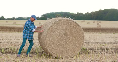 Smiling-Farmer-Rolling-Hay-Bale-And-Gesturing-In-Farm-3