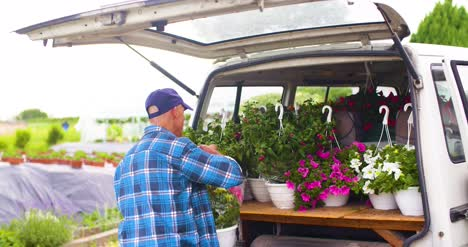 Male-Farmer-Loading-Van-Trunk-With-Hanging-Plants