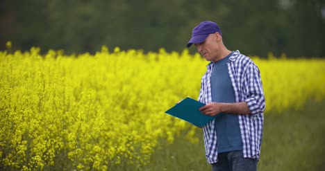 Mature-Farmer-Writing-In-Clipboard-At-Rapeseed-Cultivated-Field-4