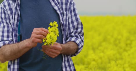 Portrait-Of-Happy-Farmer-Holding-Rapeseed-Blossoms-At-Farm-1