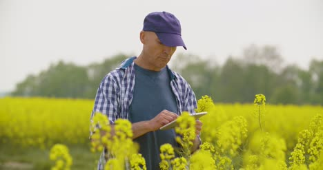 Farmer-Using-Digital-Tablet-Examining-Rape-Blossom-On-Field-4