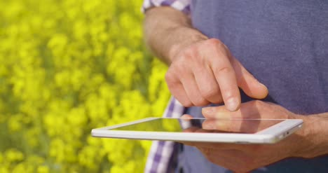 Mature-Farmer-Using-Digital-Tablet-At-Rapeseed-Field