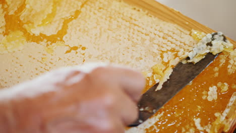 The-Beekeeper-Opens-A-Honeycomb-With-A-Special-Knife-For-The-Subsequent-Pumping-Of-Honey-4k-Video
