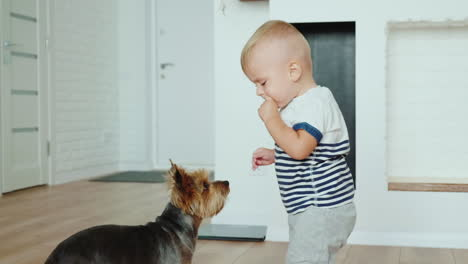 1-Year-Cool-Kid-Feeds-Dog-Biscuits-Hd-Video