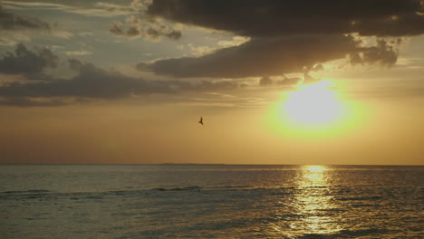 Sunset-Over-The-Sea-Seagulls-Fly-Against-The-Background-Of-The-Solar-Disk-Hd-10-Bit-Video