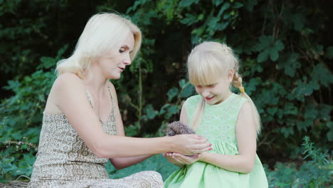 Mom-And-Daughter-Are-Holding-A-Small-Hedgehog-Communication-With-Wildlife-Concept-4k-Video