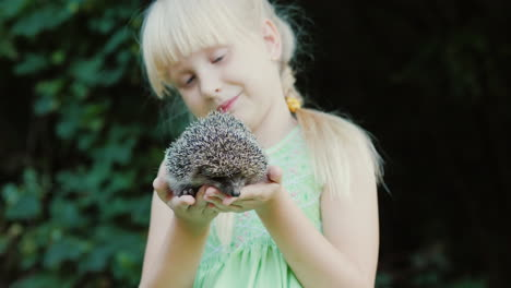 A-Happy-Child-Holds-A-Small-Hedgehog-In-His-Hands-Children-And-Wildlife-A-Well-Healed-And-Caring-Con