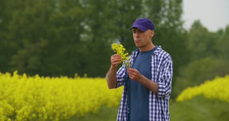 Portrait-Of-Happy-Farmer-Holding-Rapeseed-Blossoms-At-Farm-4