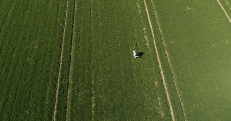 Agricultural-Researcher-Spraying-Filed-With-Herbicides-Or-Pesticides-6