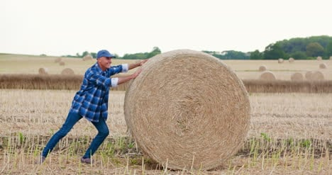 Farmer-Struggling-While-Rolling-Hay-Bale-At-Farm-1
