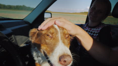 Faithful-Shepherd-Travels-With-A-Woman-Owner-In-The-Car