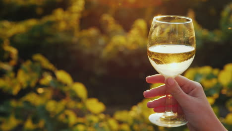 Hand-With-A-Glass-Of-White-Wine-On-The-Background-Of-The-Vineyard-The-Setting-Sun-Beautifully-Illumi
