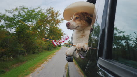 Dog-Cowboy-In-The-Hat-And-With-The-American-Flag-Rides-In-The-Car