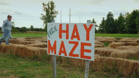 Children-Play-Dognicks-In-A-Free-Maze-Of-Hay