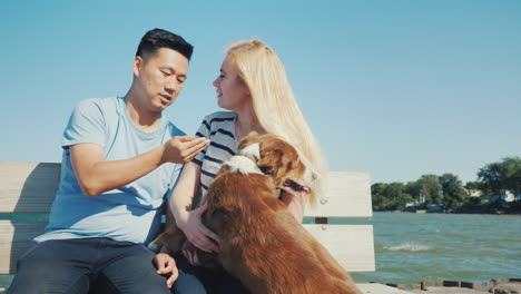 Asian-Man-And-Caucasian-Woman-Playing-With-His-Dog-They-Relax-Together-Sit-On-The-Bench-Walk-With-Yo