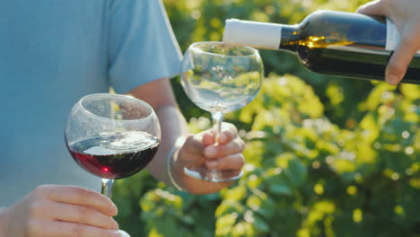 Pouring-Red-Wine-Into-Glasses-On-The-Background-Of-The-Vine-Wine-Tasting