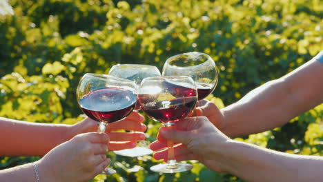 Several-Tourists-Clink-Glasses-Of-Red-Wine-Near-The-Vineyard-Wine-Tour-And-Travel-Concept