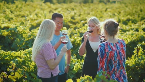 Multi-Ethnic-Group-Of-Tourists-Tasting-Wine-In-The-Vineyard-Wine-Tour-And-A-Trip-To-The-Place-Of-Pro