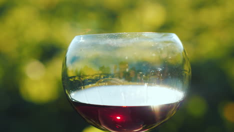 A-Glass-Of-Red-Wine-On-The-Background-Of-The-Vineyard-The-Sun-Glitters-On-The-Glass