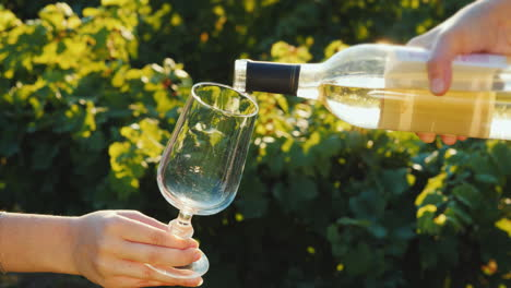 Pouring-White-Wine-Into-Glasses-On-The-Background-Of-The-Vine-Wine-Tasting