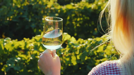 A-Woman-Holds-A-Glass-Of-White-Wine-On-The-Background-Of-A-Vineyard-The-Sun-Beautifully-Illuminates-