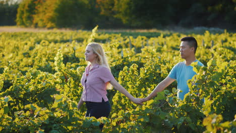 Young-Couple-In-Love-Walking-In-The-Vineyard-Tourism-And-Wine-Tasting-Concept