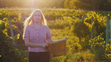 Attractive-Woman-With-A-Basket-Walks-Through-The-Vineyard-In-The-Sun