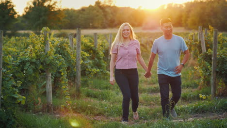 Happy-Young-Couple-Walking-Through-A-Vineyard-At-Sunset-Asian-Man-And-Caucasian-Woman