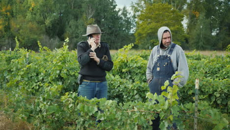 Two-Farmers-Stand-In-The-Vineyard-One-Of-The-Men-Is-Talking-On-The-Phone