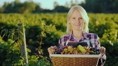 Portrait-Of-An-Attractive-Farmer-With-A-Basket-Of-Grapes-Smiles-Looks-Into-The-Camera