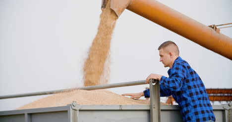 Agriculture-Farmer-Working-At-Farm-During-Harvesting-Wheat