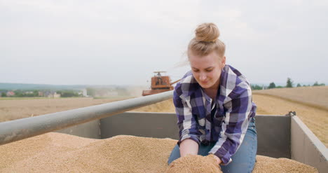 Wheat-Grains-In-Farmer-Hands-Agriculture-11