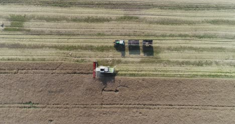 Machinery-Harvesting-Crops-On-Field-1
