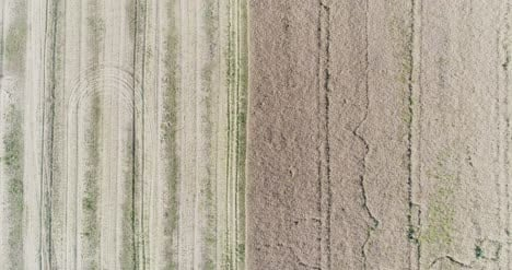 Various-Agriculture-Fields-Aerial-View