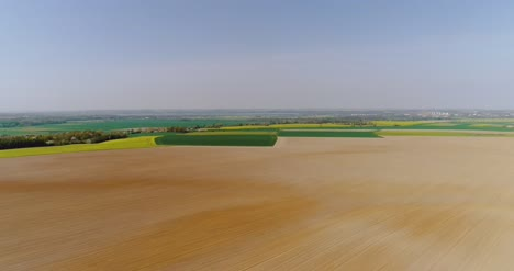 Fields-With-Various-Types-Of-Agriculture-4K