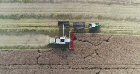 Machinery-Harvesting-Crops-On-Field-2