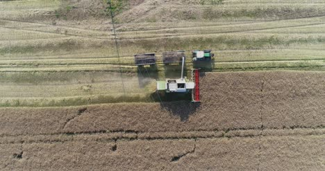 Machinery-Harvesting-Crops-On-Field-3