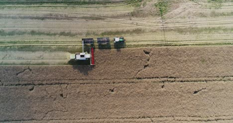 Machinery-Harvesting-Crops-On-Field-5