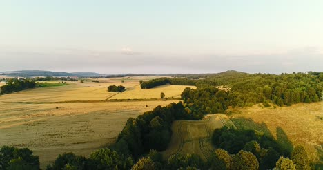Aerial-View-Sunrise-Sunset-Over-Of-Forest-1