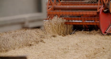Combine-Harvester-Working-In-Agriculture-Field-1