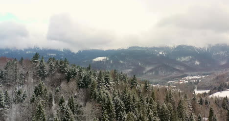 Aerial-View-Of-Forest-Covered-With-Snow-In-Mountains-4