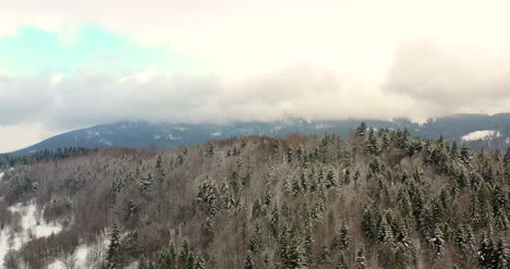 Aerial-View-Of-Forest-Covered-With-Snow-In-Mountains-5