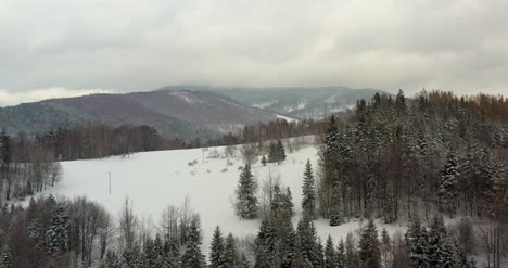 Forest-Covered-With-Snow-Aerial-View-Aerial-View-Of-Village-In-Mountains-14