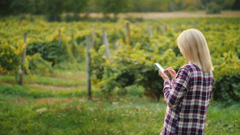 A-Woman-Farmer-Uses-A-Smartphone-On-The-Background-Of-His-Vineyard-Small-Business-Owner