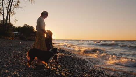 Silhouette-Of-A-Woman-Who-Plays-With-Her-Dog-Breed-Caucasian-Shepherd-At-Sunset