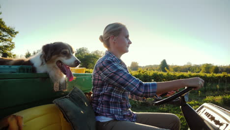 A-Female-Farmer-On-A-Small-Tractor-Rides-Along-Her-Farm-Beside-Her-Her-Dog
